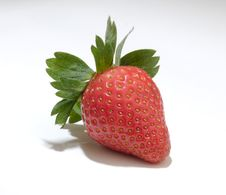 Free Strawberry Stock Photography - 4052852
