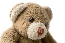 Free Portrait Of Teddy Bear. Stock Photography - 4053822