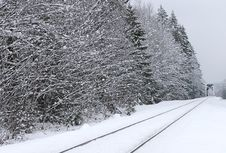 Free Railroad Tracks In Winter Royalty Free Stock Images - 4054059