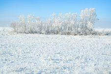 Free White Winter Stock Photo - 4054990