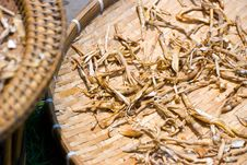 Free Mysterious Spices Being Dried Up In The Sun Royalty Free Stock Images - 4056429