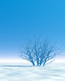 Free Winter Scenery Stock Photo - 4061800