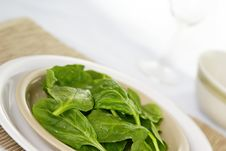 Free Raw Spinach Stock Photography - 4062212