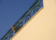 Free Feet Resting On Decorative Wrought Iron Railing Stock Image - 4064841