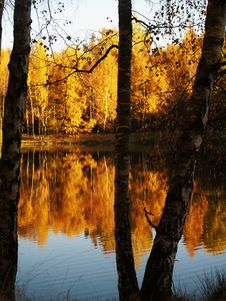 Free Autumn Pond Royalty Free Stock Photo - 4068335