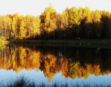Free Autumn Pond Stock Photography - 4068412