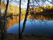 Free Autumn Pond Stock Photos - 4068443