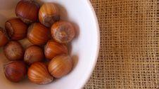 Free Hazelnuts Royalty Free Stock Images - 4068929