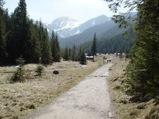 Path In The Tatry Mountains Stock Photo
