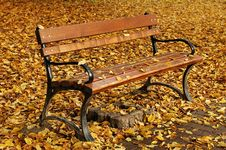 Free Bench In Autumn Stock Photos - 4069053