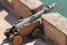 Free Morocco, Essaouira: Seagull On A Very Old Cannon Stock Photo - 4069280