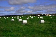 Field Of Bales Royalty Free Stock Images