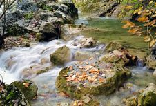 Free Autumn Stream Royalty Free Stock Photos - 4070498