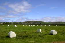 Free Field Of Bales Iii Stock Photos - 4070973