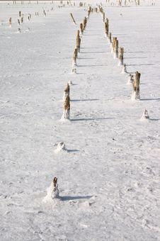 Free Salt Lake Royalty Free Stock Image - 4071566