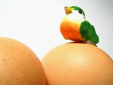 Free Little Bird And Two Eggs Stock Photo - 4073080