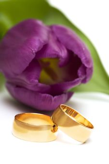 Free Golden Rings With Flower Stock Image - 4073621