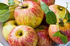 Free Fresh Apple Stack Stock Photo - 4073810