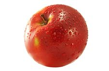 Free Apple Stock Photography - 4074182