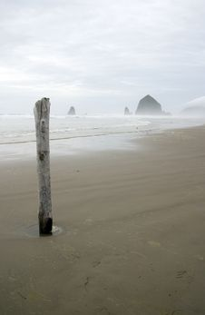 Free Solitary Piling On Cannon Beach Royalty Free Stock Photography - 4074237
