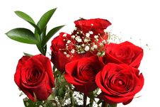 Free Bunch Of Roses Stock Photo - 4077770