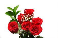 Free Bunch Of Roses Stock Photography - 4077772