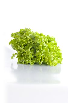 Free Green Lettuce Royalty Free Stock Images - 4078759