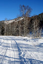 Free Altai Mountain With Snow Royalty Free Stock Images - 4083349