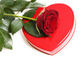 Free Red Rose With Heart Royalty Free Stock Images - 4088059