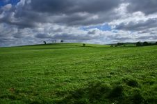 Green Fields Of Spring Royalty Free Stock Images