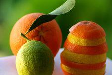 Free Lemons And Oranges Royalty Free Stock Photography - 4082117