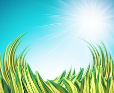 Free Summer Background With Grass Stock Images - 4084644