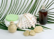 Free Cleaning Products For Bath And Spa Stock Photography - 4086932