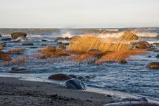 Free Stormy Sea Royalty Free Stock Photos - 4087978