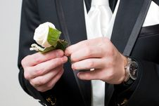 A Rose In The Hands Of The Man In The Suit Royalty Free Stock Images