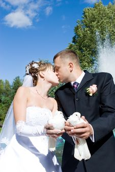 A Bride And A Groom With Pigeons Royalty Free Stock Image