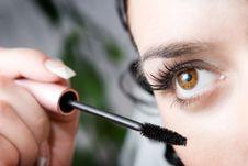 Free Morning Make-up Royalty Free Stock Photography - 4088837
