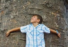 Free Boy Hugging A Tree Royalty Free Stock Image - 4089316