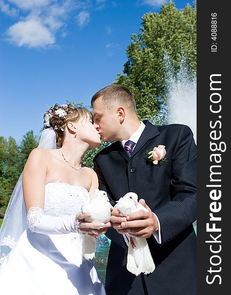 A bride and a groom with pigeons
