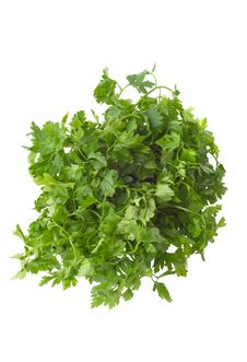 Free Bunch Of Parsley Royalty Free Stock Images - 4090119