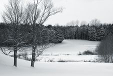 Free Golf Course In Winter Royalty Free Stock Images - 4090149