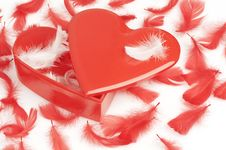 Free Heart Shaped Gift Box And Feathers Stock Image - 4093171