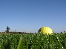 Free Golf Ball Royalty Free Stock Images - 4094549