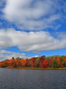 Free Fall Colors And Clouds Stock Photo - 4094670