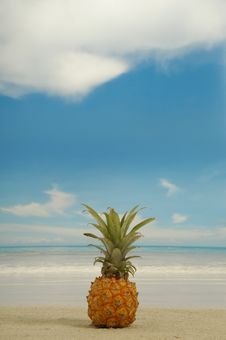 Free Pineapple And Beach Royalty Free Stock Photos - 4097728