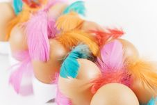 Free Eggs And Colored Feathers Stock Images - 4099734