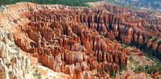 Free Bryce Amphitheater - Panoramic Royalty Free Stock Image - 416636