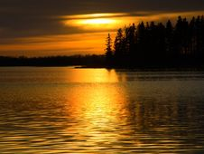 Free Golden Waters Royalty Free Stock Photos - 417468