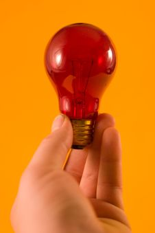 Free Red Bulb Stock Photo - 418330