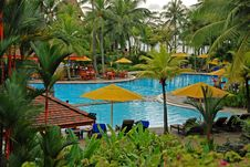 Free Coconut Tree And Swimming Pool At The Seaside Royalty Free Stock Photography - 4101977